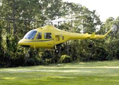 HUMMINGBIRD 300LS Helicopter buy